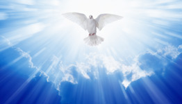 dove flying toward heaven